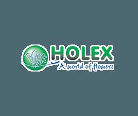 holex-logo